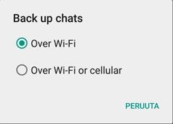 whatsapp_backup_to_google_drive-wifi_cellular